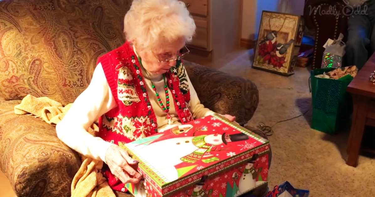 Grandma Gets A Cat for Christmas