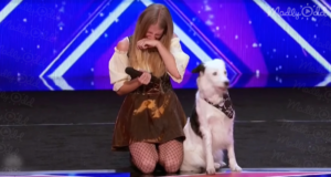 Dog Act AGT