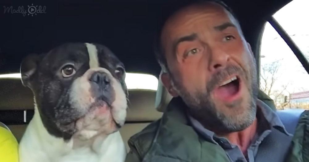 Bulldog Sings 'Time To Say Goodbye'